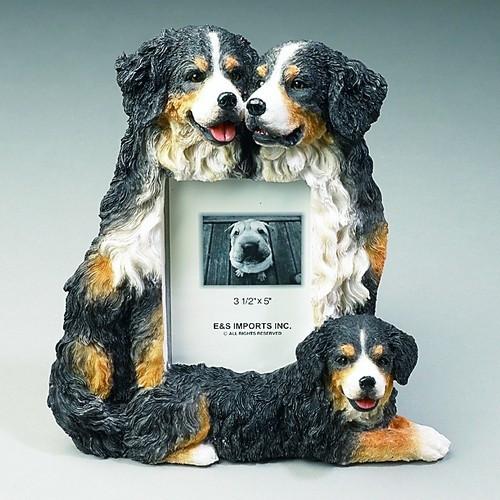 Bernese Mountain Dog Small Photo Frame
