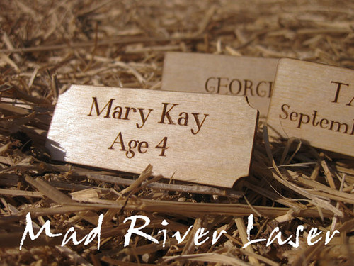 "2.5"" x 1"" Laser Engraved and Cut Wooden Nameplate - Baltic Birch"