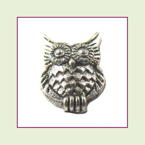 Owl Silver Floating Charm