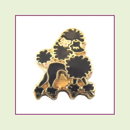 Dog - Poodle Black (Gold Base) Floating Charm