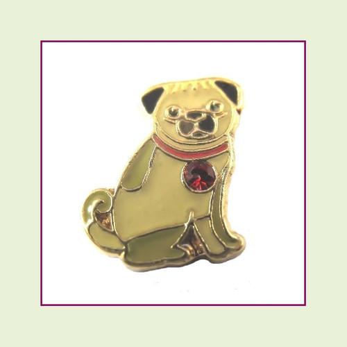 Dog - Pug (Gold Base) Floating Charm
