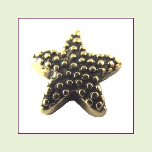 Starfish Gold Floating Charm