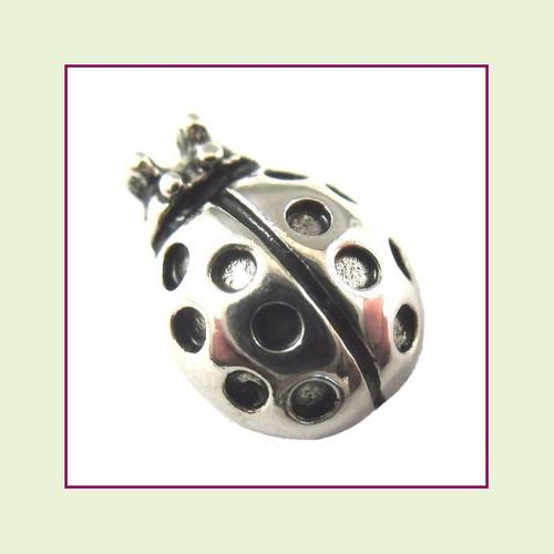 Ladybug Silver Floating Charm