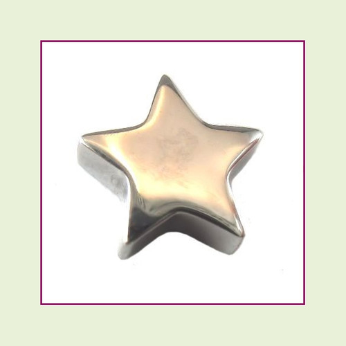 Star (Silver) Stainless Steel Floating Charm