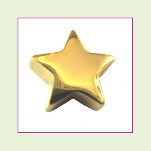 Star (Gold) Stainless Steel Floating Charm