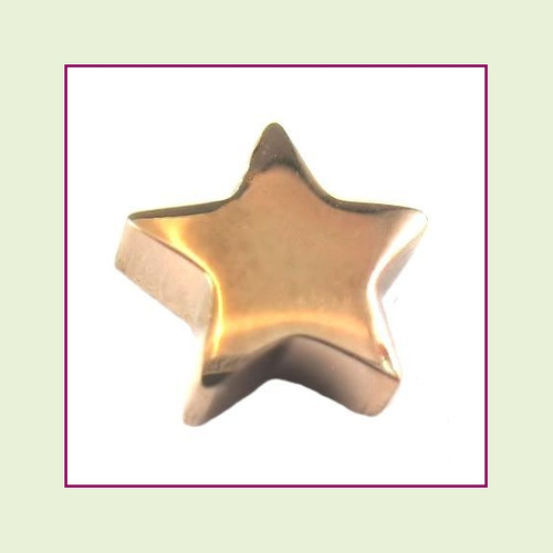 Star (Rose) Stainless Steel Floating Charm