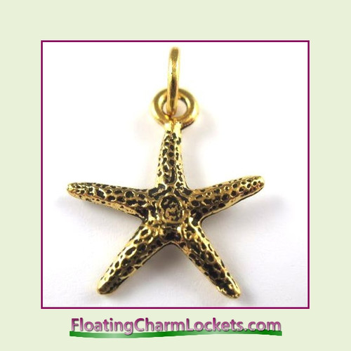 O-Ring Charm:  Starfish (Gold) 19x19mm