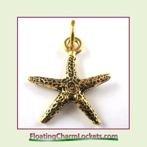 O-Ring Charm:  Starfish (Gold) 19x19mm