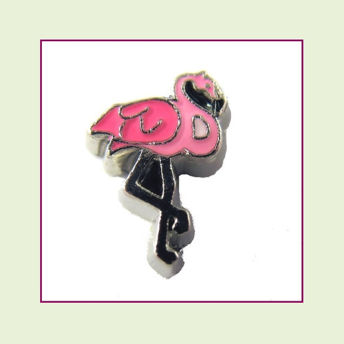 Flamingo (Silver Base) Floating Charm