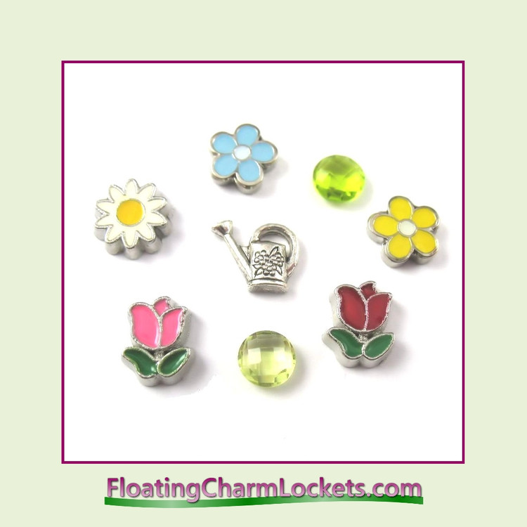 FCL Designs Spring Floating Charm Combination for Lockets