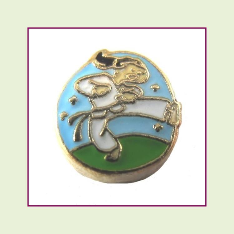 Karate Girl (Gold Base) Floating Charm
