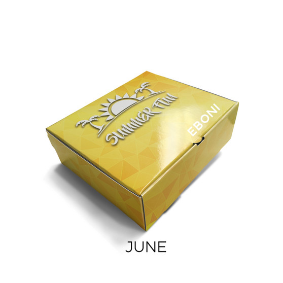 Oh What Fun It Is Summer Boxes - June