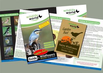 Garden Bird wildflower seeds