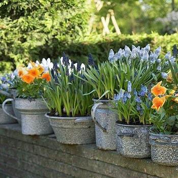 Pot Irrigation Kit - 20 planter pot size - with Tap timer