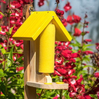Butterfly / Bee Nectar feeding station