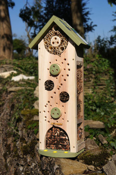 Big Insect Biome / Insect Hotel