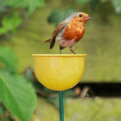 Metal cup bird feeder Yellow