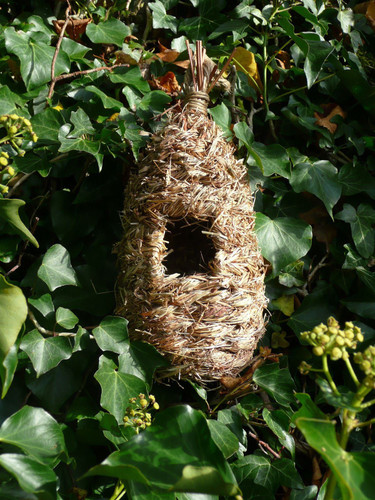 Roosting Nest Pocket - Tall