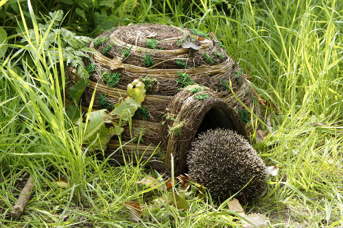Wildlife World Hedgeghog Igloo