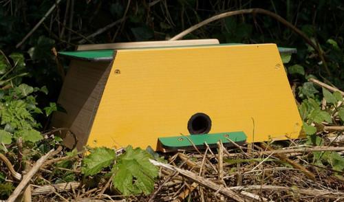 Bumblebee Nester - Mini Mammal House