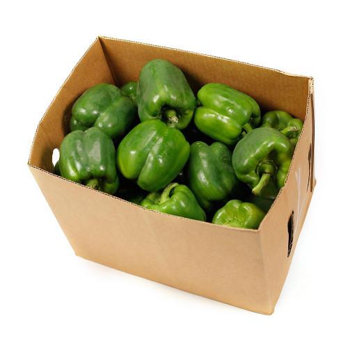 Capsicum Green Organic Box 6kg (Thomas)