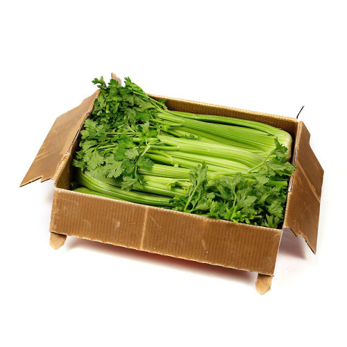 Celery Organic Box (8 Bunches) Good Quality (Helps Rd)