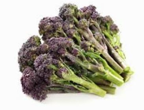 Baby Broccoli Purple Organic Box (12 Bunches) (Cafresco)
