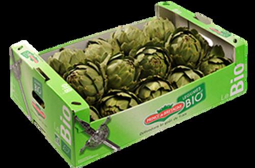 Artichoke Globe Organic Box (28 units) (Cafresco)