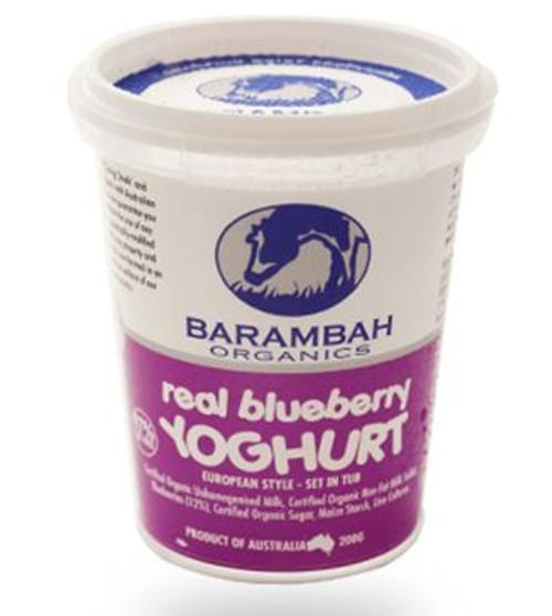 Barambah Organics Yoghurt Blueberry 500g