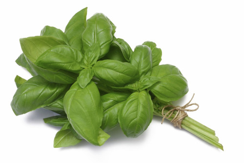 Basil Bunch Organic (Coolibah)