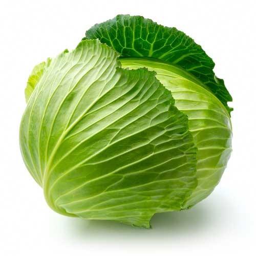Cabbage Green Organic Each (Busch)