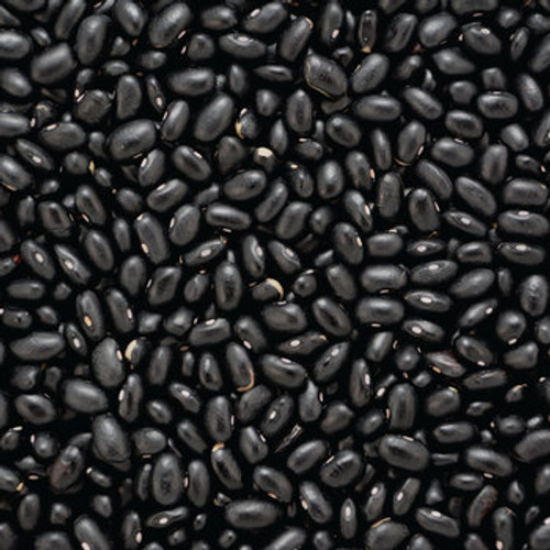Bulk Organic Black Turtle Beans 25Kg (Pre-Order Item)