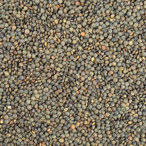 Bulk Organic French Style Green Lentils 25Kg (Pre-Order Item)
