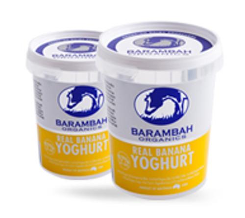 Barambah Organics Yoghurt Banana 500g x 12
