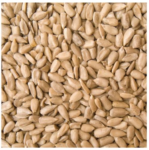 Bulk Australian Sunflower Seeds 12.5kg (Pre-Order Item)