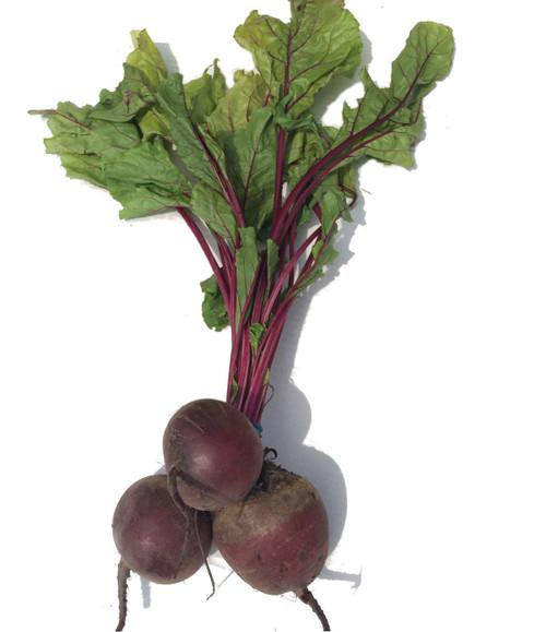 Beetroot Organic per Bunch (Jarcman)
