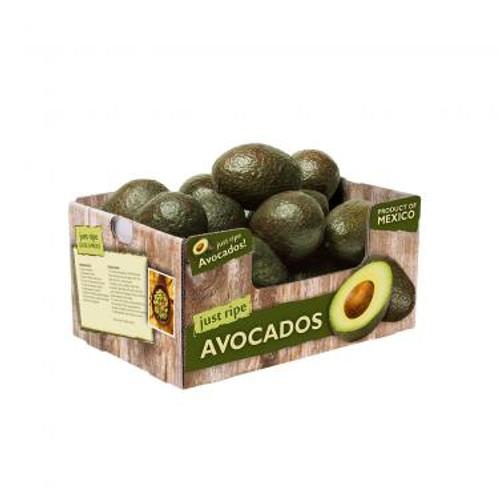 Avocado Hass Bulk Organic 10Kg Small/Medium/Large (Rain Forest Organic)