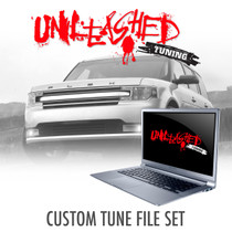 Ford Flex Custom Tunes