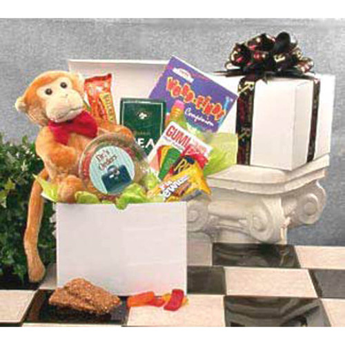 Hang In There Get Well Care Package | Get Well Gift Baskets