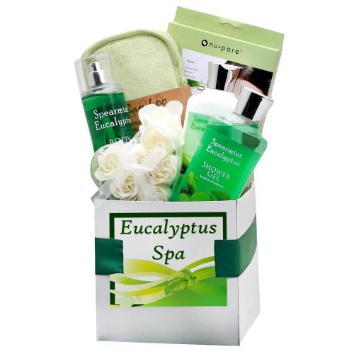Rejuvenating Eucalyptus Spa Care Package | Spa Gift Baskets