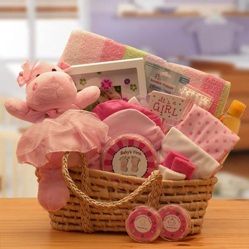 Our Precious New Baby Girl Pink Carrier | Baby Gift Baskets