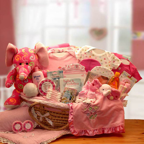 Precious Petals Baby Girl Deluxe Moses Carrier | Baby Gift Baskets