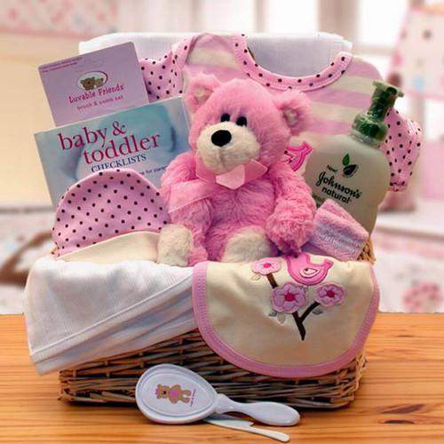 Baby Basics Newborn Girl Organic Gift Basket | Baby Gift Baskets