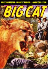 The Big Cat ( Download )