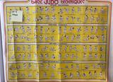 Basic Judo