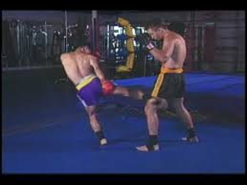 Muay Thai boxing Volume 3: Kicks & Knees
