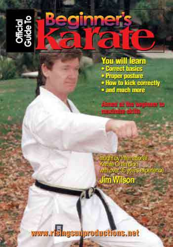 Beginners Guide To Karate (DVD Download)