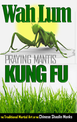 Wah Lum Praying Mantis Kung Fu