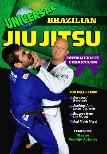 Universal Brazilian Jiu Jitsu Intermediate Curriculum ( Download )