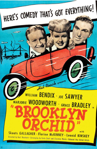 Brooklyn Orchid ( Download )